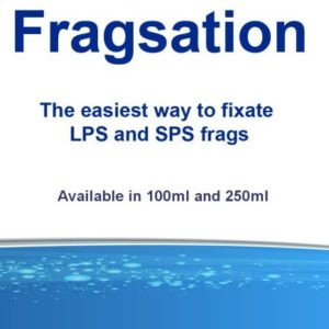 fragsation 100ml