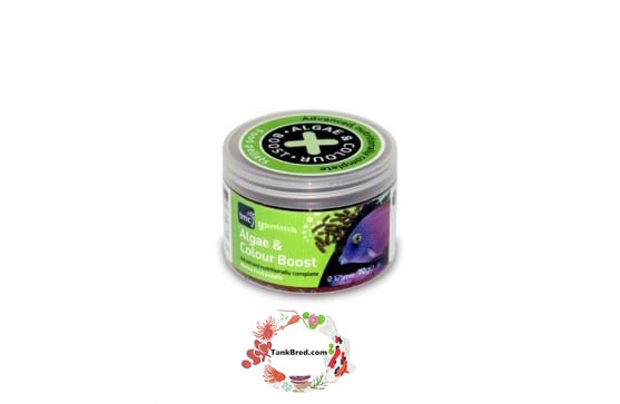 Gamma NutraPellets Algae and Colour Boost