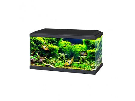 Ciano Aquarium 60 LED