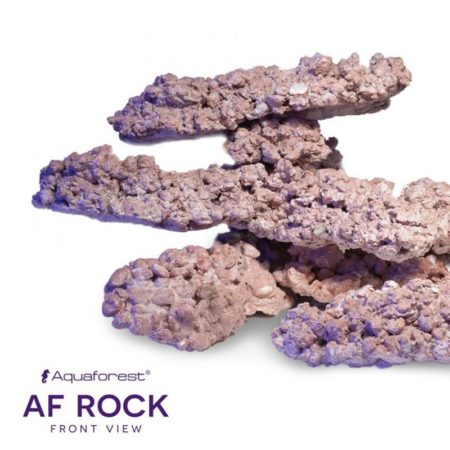 aquaforest rock