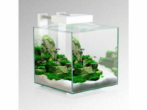 Ciano Nexus Pure 15 Cube Aquarium With LED Light